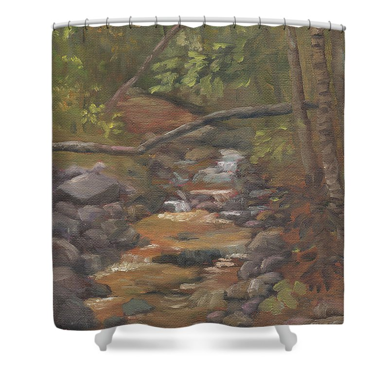 Waterfall Shower Curtain featuring the painting Spring on the Gale River by Sharon E Allen