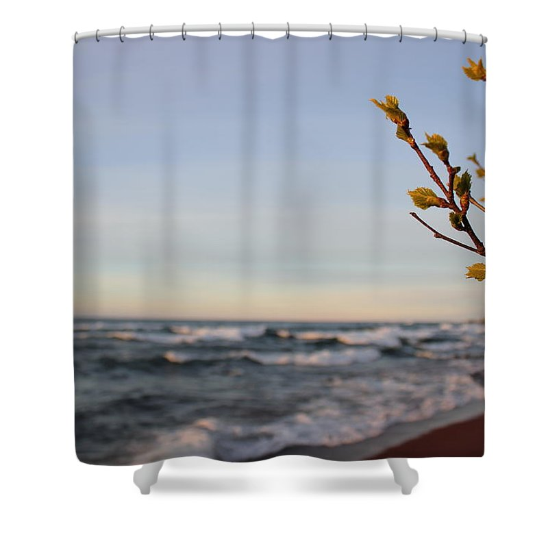 Pure Shower Curtain featuring the photograph Spring View by Two Bridges North