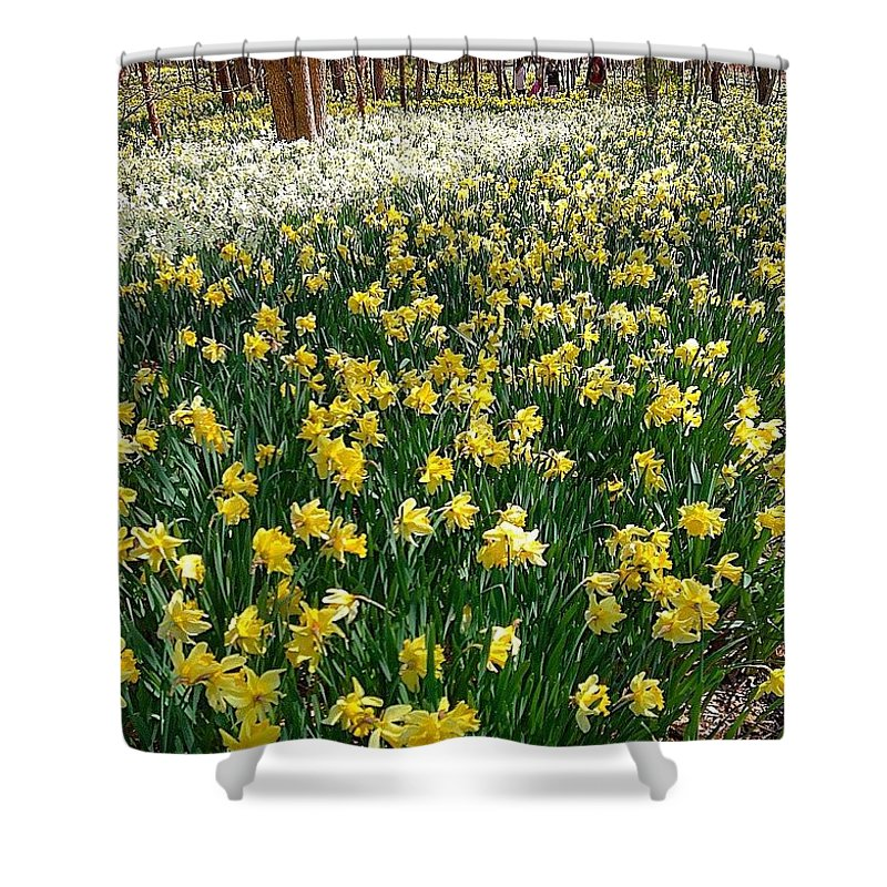 Southcoast Shower Curtain featuring the photograph A Spring Of Hope by Kate Arsenault