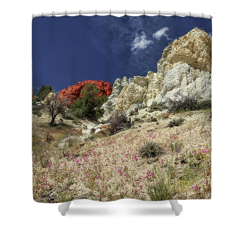 Landscape Shower Curtain featuring the photograph Springtime At Red Rock Canyon by James Eddy