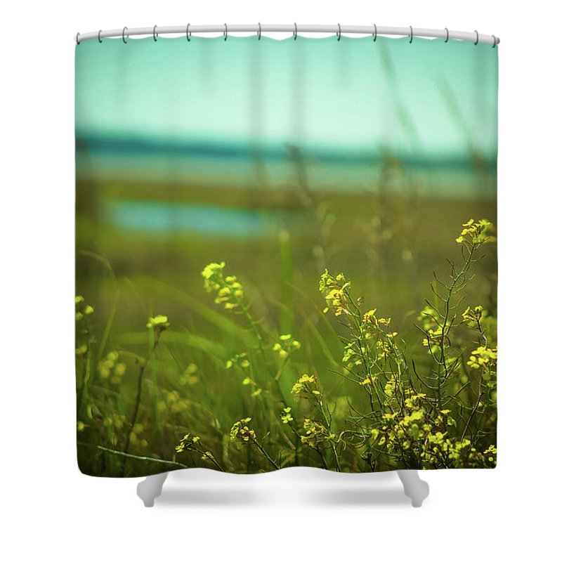 Beach Shower Curtain featuring the photograph Springtime At The Beach by Amy Bishop