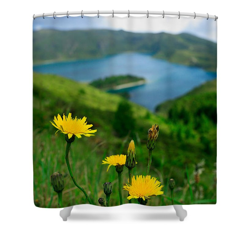 Caldera Shower Curtain featuring the photograph Springtime In Fogo Crater by Gaspar Avila