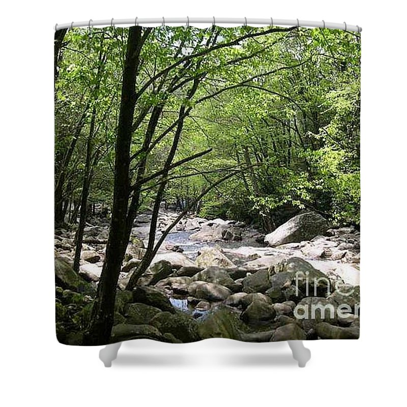 Nature Shower Curtain featuring the photograph Springtime In The Smoky Mountains by Barb Montanye Meseroll
