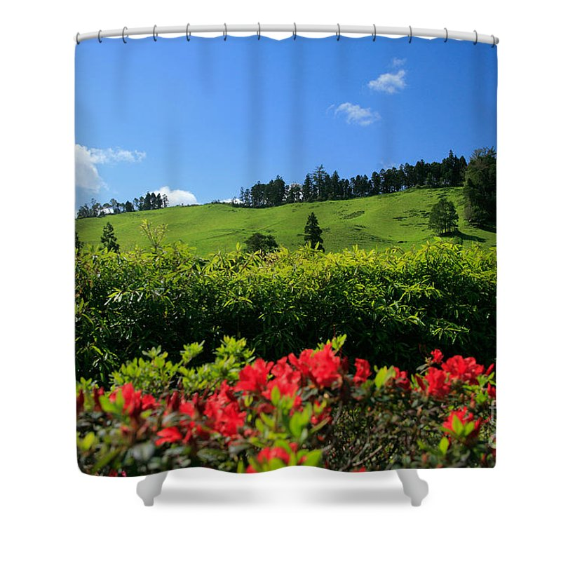 Countryside Shower Curtain featuring the photograph Springtime Landscape by Gaspar Avila