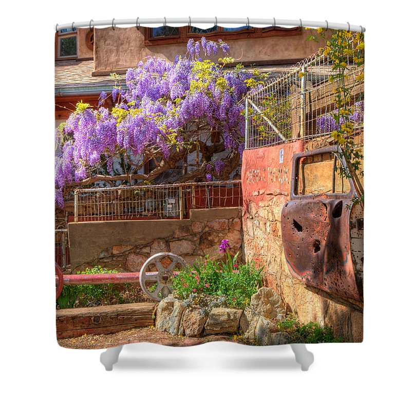Wisteria Shower Curtain featuring the photograph Springtime Wisteria In Old Bisbee by Charlene Mitchell