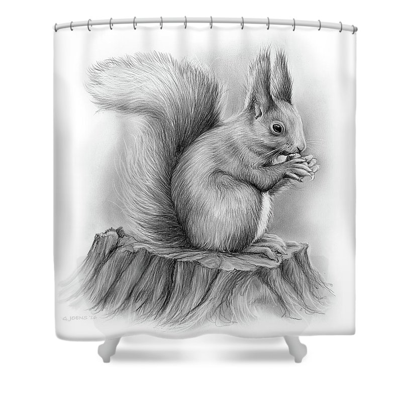 Squirrel Shower Curtain Featuring The Drawing By Greg Joens