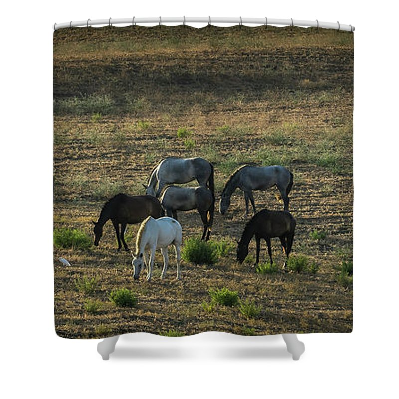 England Shower Curtain featuring the photograph Sserenity by Peter Hayward Photographer
