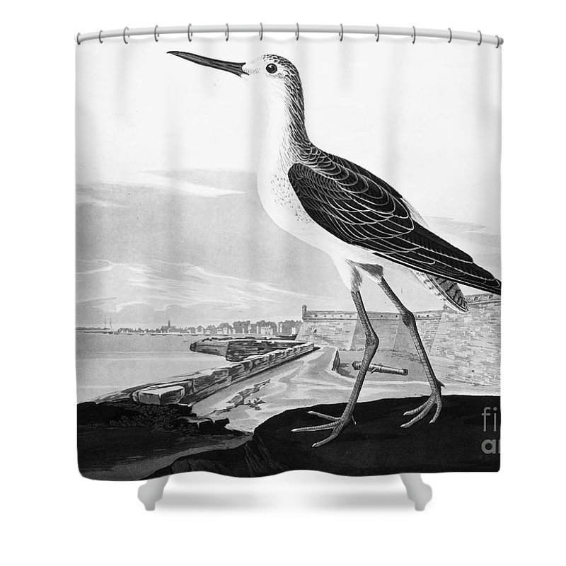 1830s Shower Curtain featuring the photograph St. Augustine, Florida by Granger