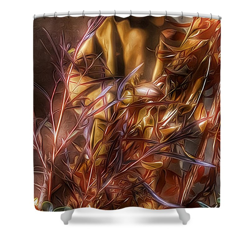 St Francis Of Assisi Shower Curtain featuring the photograph St. Francis Of Assisi by Tom Kiebzak