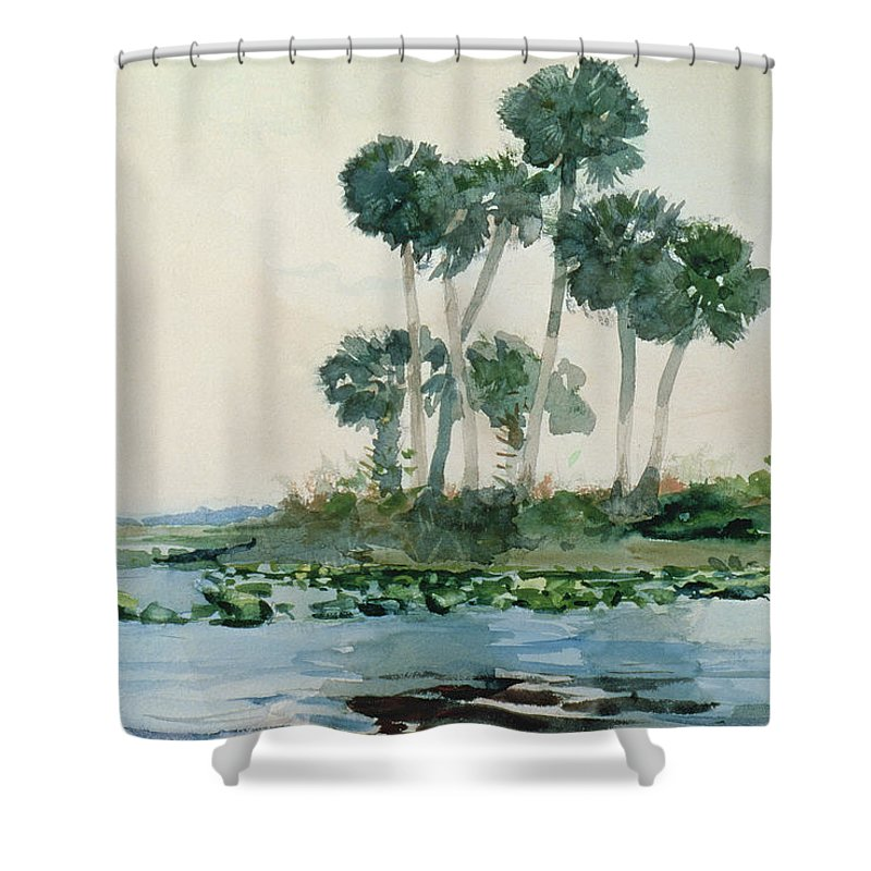 St Johns River Shower Curtain Featuring The Painting Florida By Winslow Homer