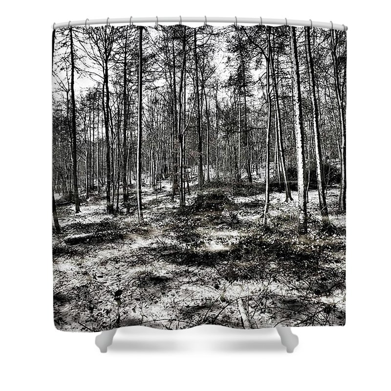 Stlawrenceswood Shower Curtain featuring the photograph St Lawrence's Wood, Hartshill Hayes by John Edwards