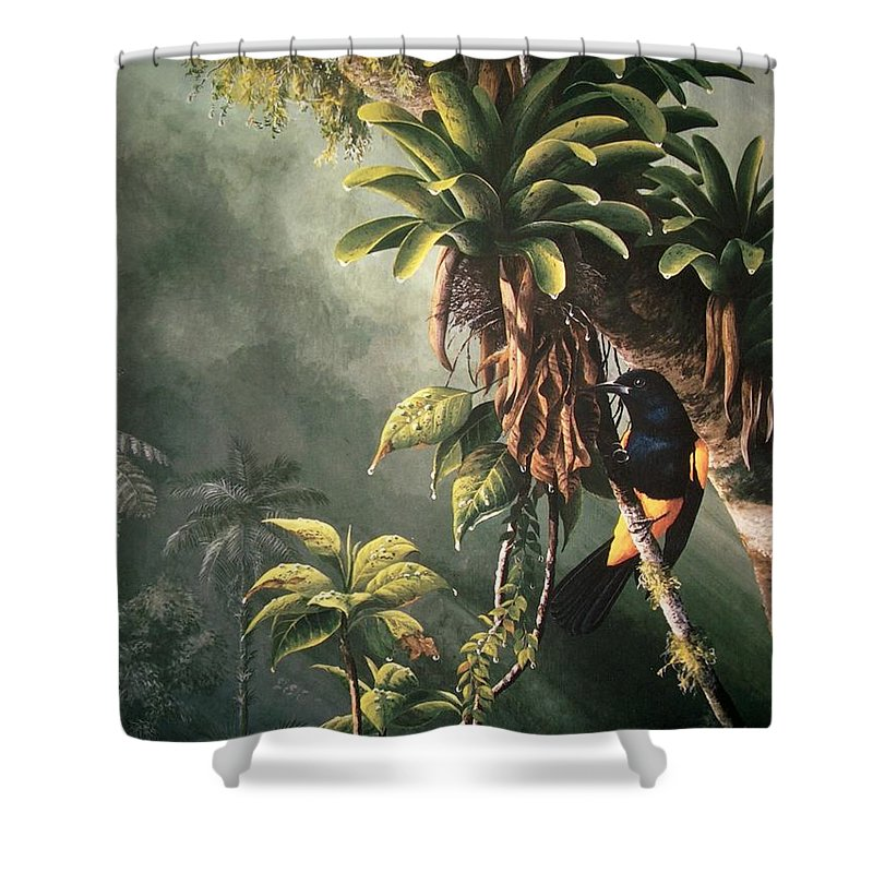 Chris Cox Shower Curtain featuring the painting St. Lucia Oriole In Bromeliads by Christopher Cox