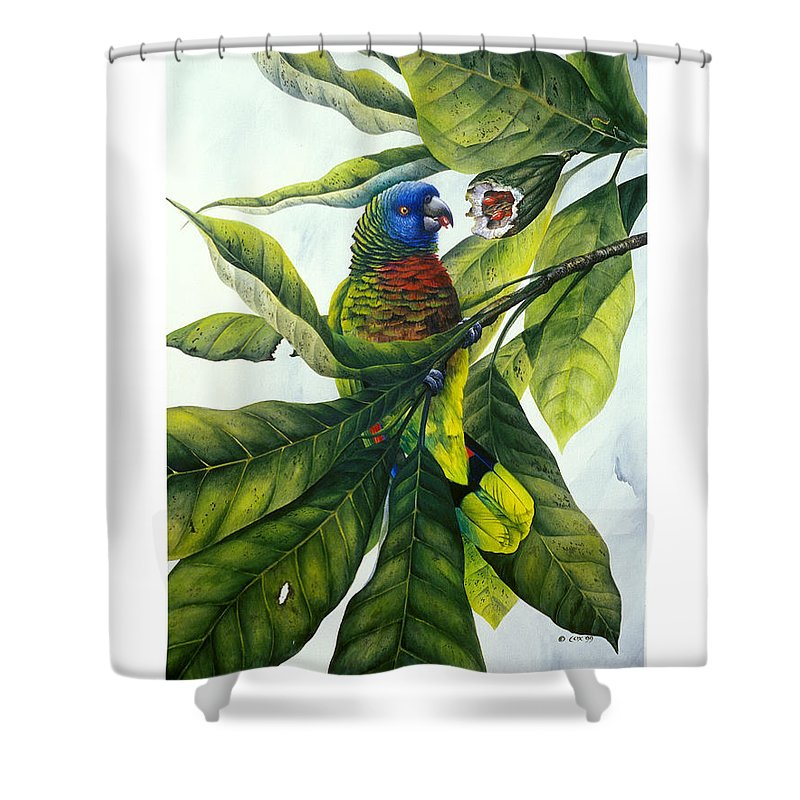 Chris Cox Shower Curtain featuring the painting St. Lucia Parrot And Fruit by Christopher Cox