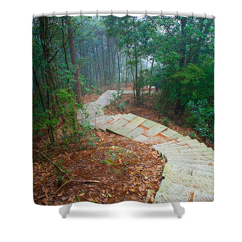 Trees Shower Curtain featuring the photograph Stairs Down Mountain by James O Thompson