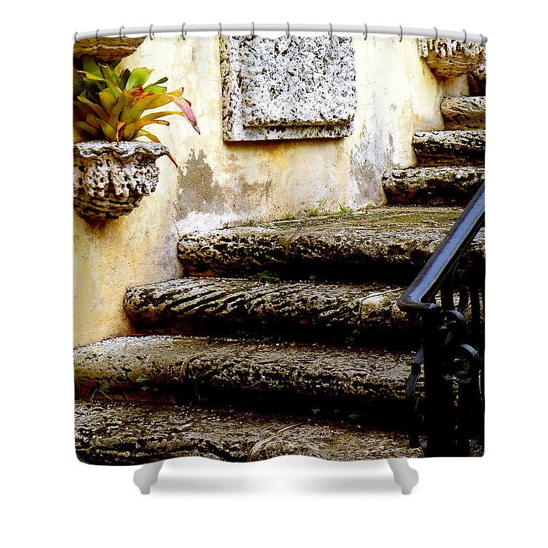 Landscape Shower Curtain featuring the photograph Stairs To Life by Patricia Awapara