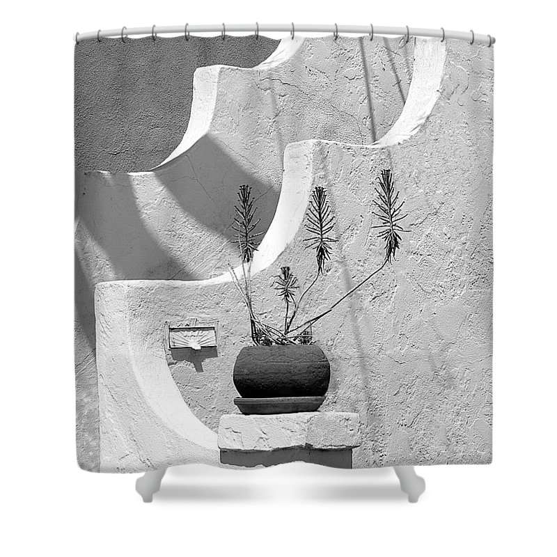 Plant Shower Curtain featuring the photograph Stairway Plant by Perry Webster