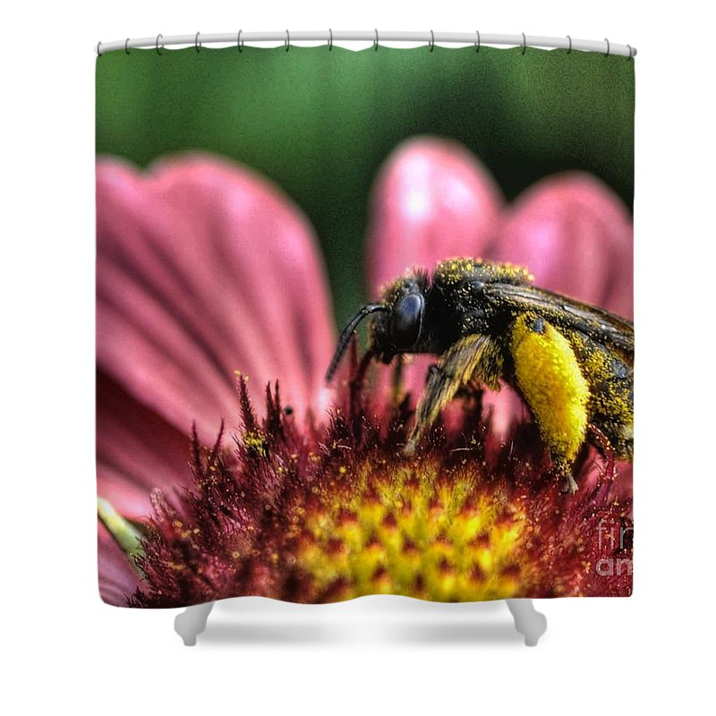 Backyard Flowers Shower Curtain featuring the photograph Staking A Claim by Chris Fleming