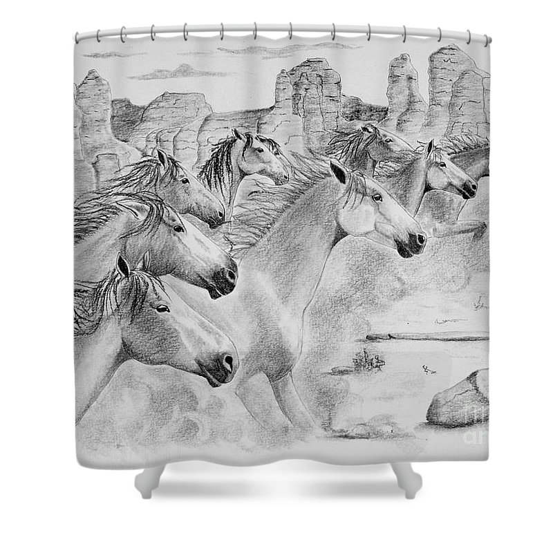 Mustangs Shower Curtain featuring the drawing Stampede In Sedona by Joette Snyder