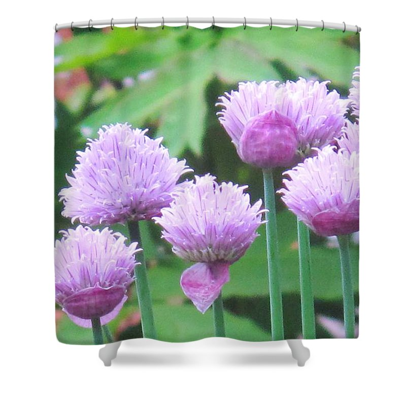 Flower Shower Curtain featuring the photograph Stand Tall by Ian MacDonald