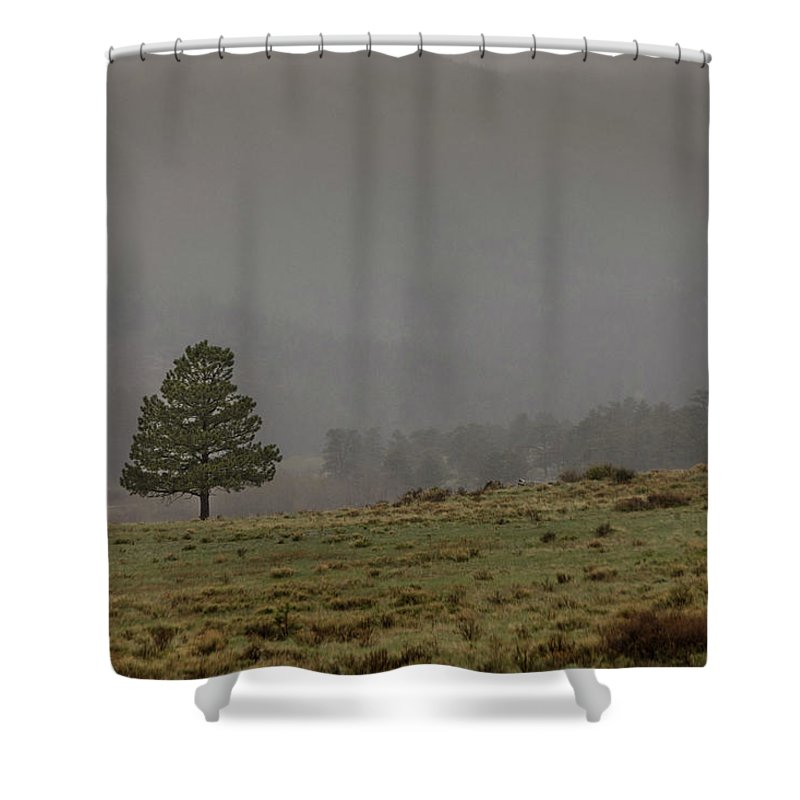 Landscape Shower Curtain featuring the photograph Standing In The Mist by Teresa Wilson