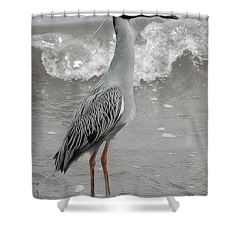 Bird Shower Curtain featuring the digital art Standing Proud by DigiArt Diaries by Vicky B Fuller