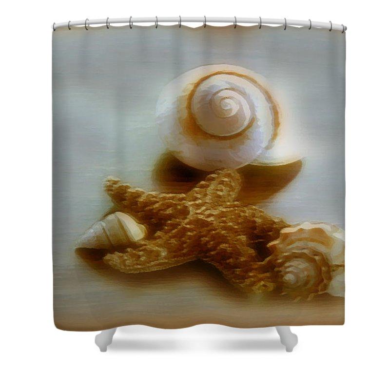 Beach Art Shower Curtain featuring the photograph Star And Shells by Linda Sannuti