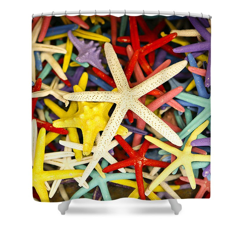 Starfish Shower Curtain featuring the photograph Starfish Dressed Up by Marilyn Hunt
