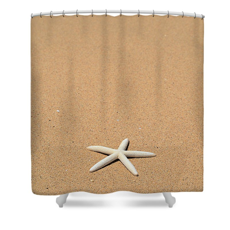 Animal Art Shower Curtain featuring the photograph Starfish by Kyle Rothenborg - Printscapes