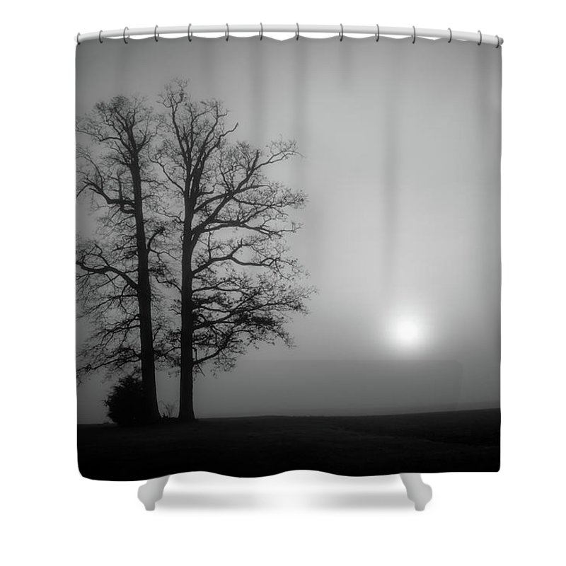 Tree Shower Curtain featuring the photograph Staying Together by Greg Sommer