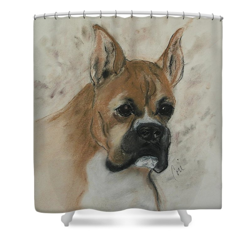 Dog Shower Curtain featuring the drawing Steady Goes It by Cori Solomon