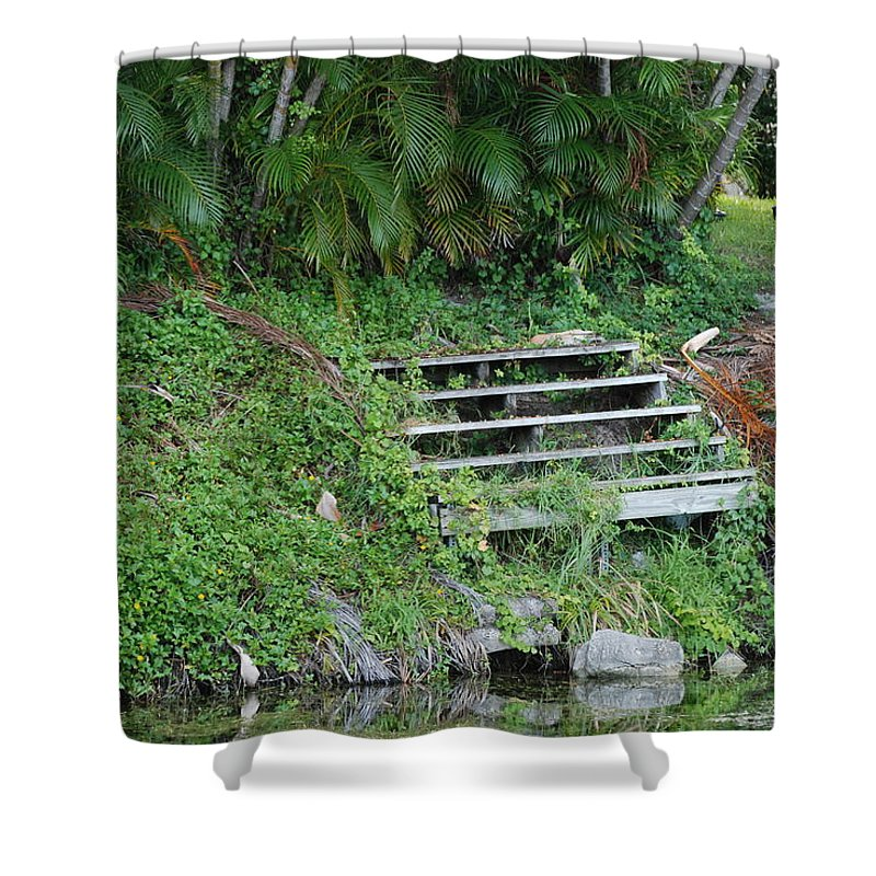 Grass Shower Curtain featuring the photograph Steps In The Grass by Rob Hans