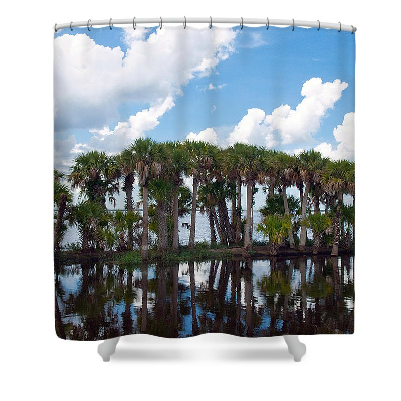 Florida; Water; Canal; Stick; Marsh; Drowned; Trees; Drown; Fellsmere; Sebastian; River; Indian; Clo Shower Curtain featuring the photograph Stick Marsh In Fellsmere Florida by Allan Hughes
