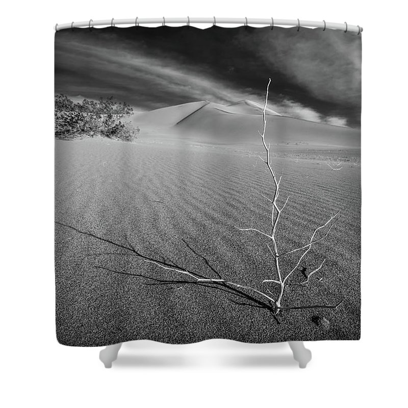 California Shower Curtain featuring the photograph Stick by Peter Tellone