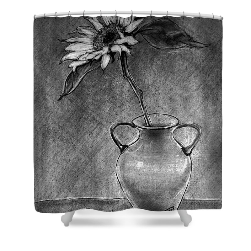 Still Life Shower Curtain featuring the drawing Still Life - Vase With One Sunflower by Jose A Gonzalez Jr