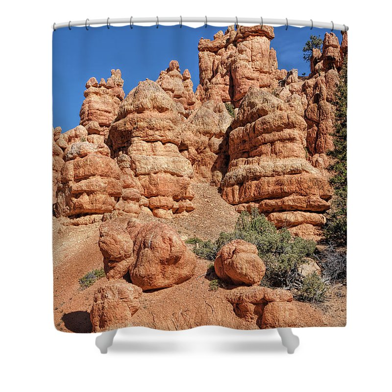 John Bailey Shower Curtain featuring the photograph Stone Toadstools by John M Bailey