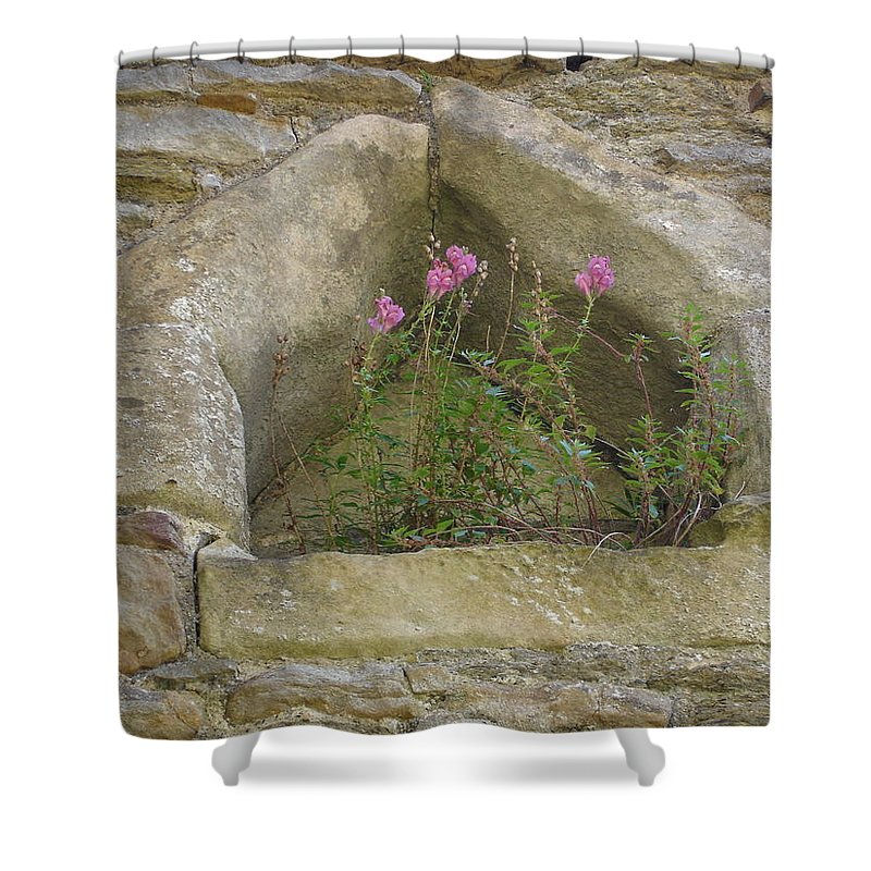 Flowr Shower Curtain featuring the photograph Stone Wall Determination by Susan Baker