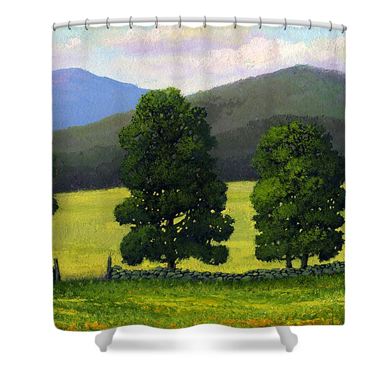 Landscape Shower Curtain featuring the painting Stonewall Field by Frank Wilson