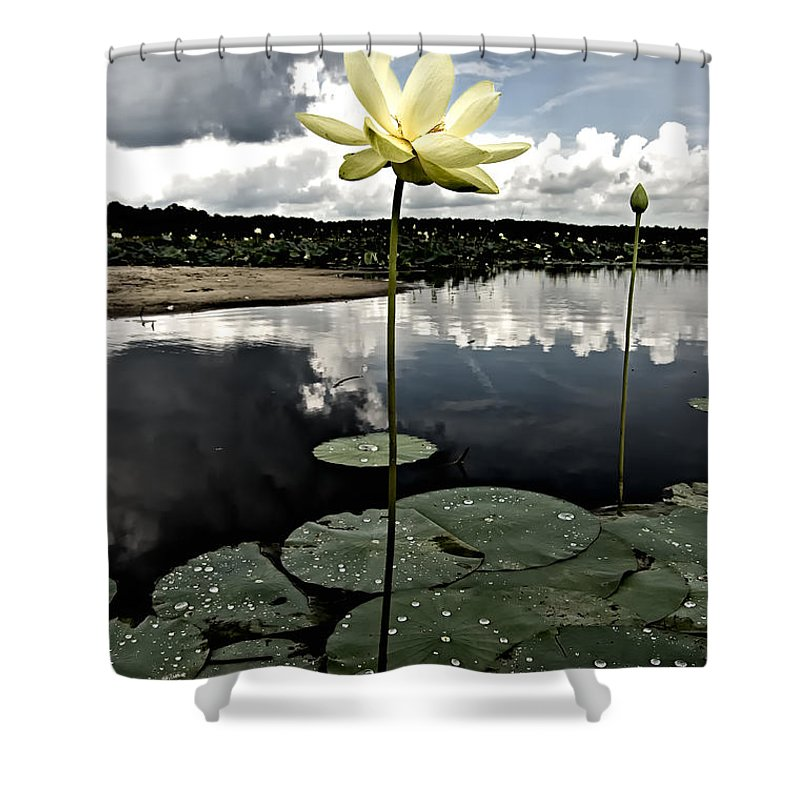 Lotus Shower Curtain featuring the photograph Stormy Lotus by Rich Leighton