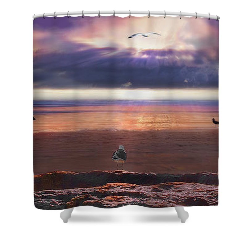 Seagull Shower Curtain featuring the digital art The Anointing by John Christopher