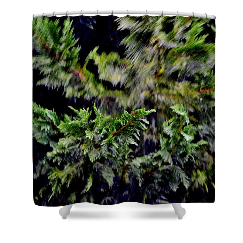 Trees Shower Curtain featuring the photograph Stormy Weather by Eileen Brymer