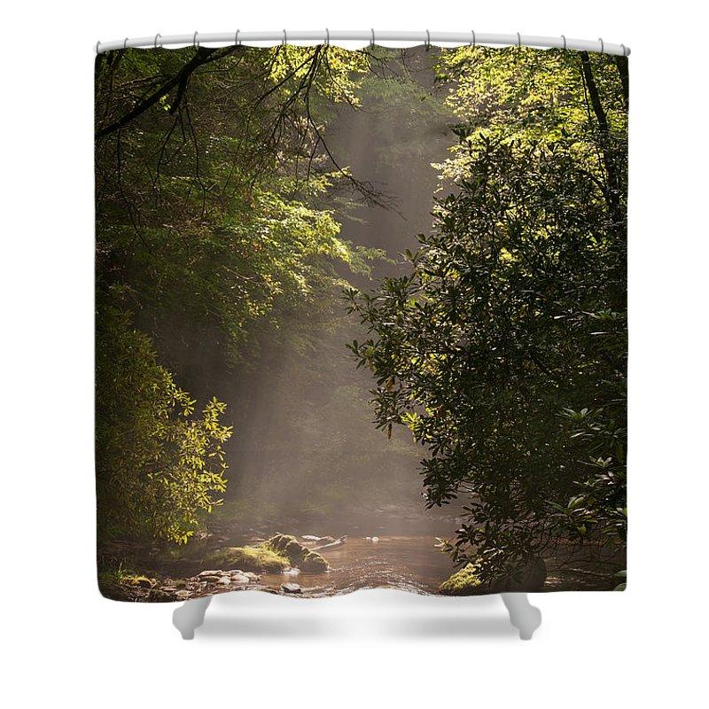 Blueridge Shower Curtain featuring the photograph Stream Light by Steve Gadomski