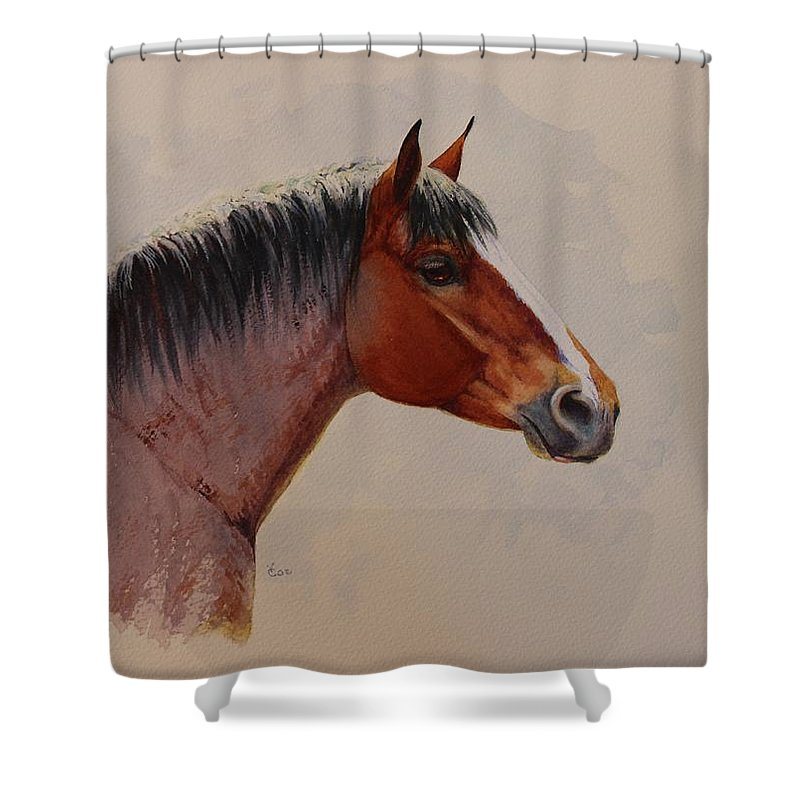 Draft Horse Shower Curtain featuring the painting Strength And Kindness by Valerie Coe