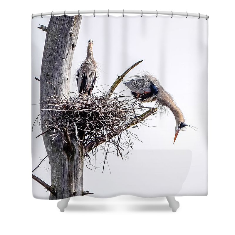 Heron Shower Curtain featuring the photograph Stretch by Barbie DelCamp