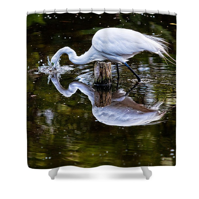 Art Shower Curtain featuring the photograph Strike by Christopher Holmes