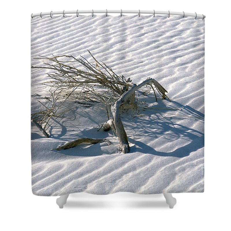 White Sands Shower Curtain featuring the photograph Struggle To Survive by Sandra Bronstein