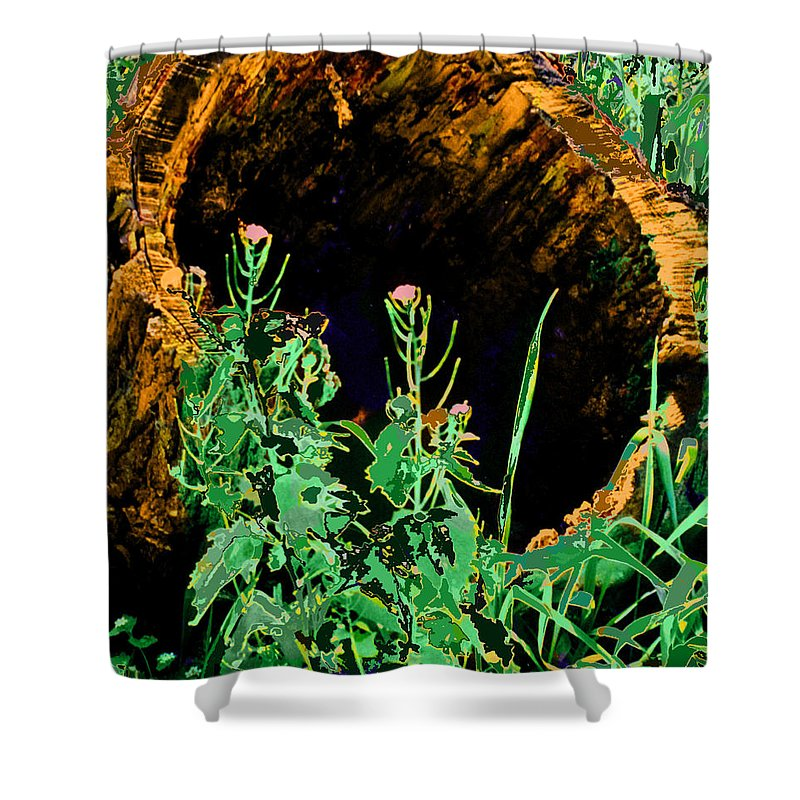 Forest Shower Curtain featuring the digital art Stump Transformed by Ian MacDonald