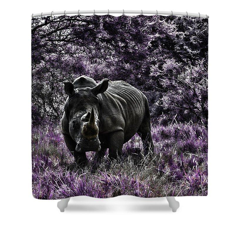 Rhino Shower Curtain featuring the photograph Styled Environment-the Modern Trendy Rhino by Douglas Barnard