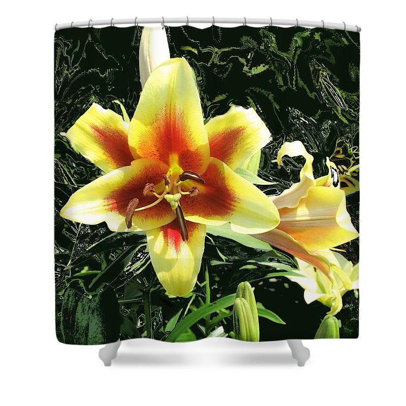 Flower Shower Curtain featuring the photograph Subtle Beauty by Ian MacDonald