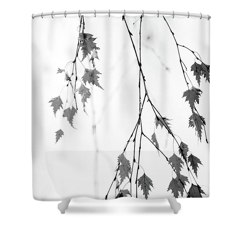 Leaves Shower Curtain featuring the photograph Subtle by Rebecca Cozart
