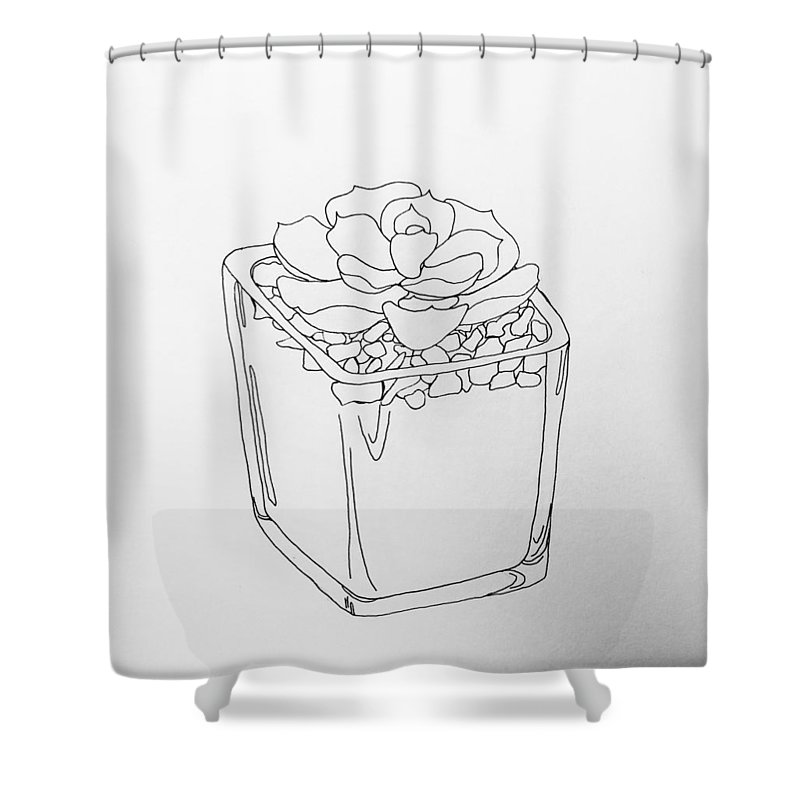 Succulent Shower Curtain Featuring The Drawing Line By Alyssa Norby
